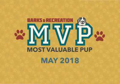 Barks & Recreation Most Valuable Pups (MVPs) —May 2018