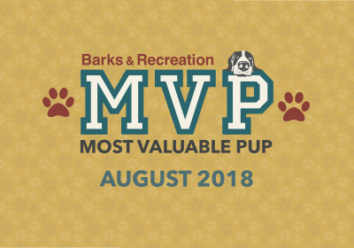 Barks & Recreation Most Valuable Pups (MVPs) —August 2018