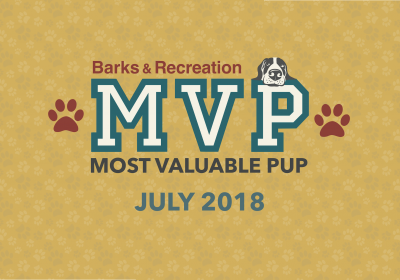 Barks & Recreation Most Valuable Pups (MVPs) —July 2018