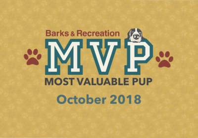 Barks & Recreation Most Valuable Pups (MVPs) — October 2018