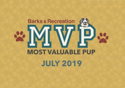 Barks & Recreation Most Valuable Pups (MVPs) —July 2019