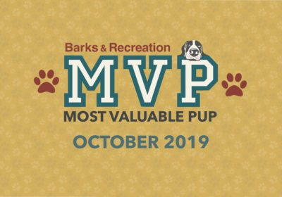 Barks & Recreation Most Valuable Pups (MVPs) —October 2019