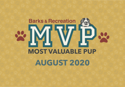 Barks & Recreation Most Valuable Pups (MVPs) — August 2020