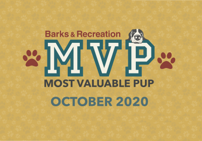 Barks & Recreation Most Valuable Pups (MVPs) — October 2020