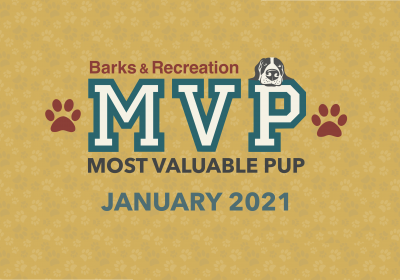 Barks & Recreation Most Valuable Pup (MVP) — January 2021