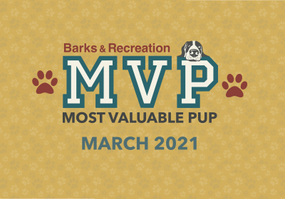 Barks & Recreation Most Valuable Pup (MVP) — March 2021