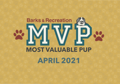 Barks & Recreation Most Valuable Pup (MVP) — April 2021